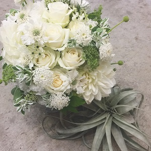 gracegroan 白花