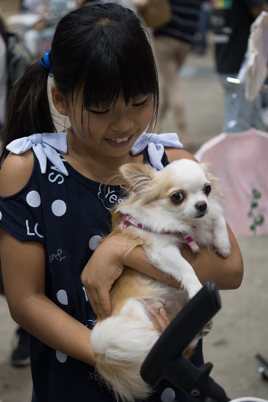 保護御🐕 子供と犬★960