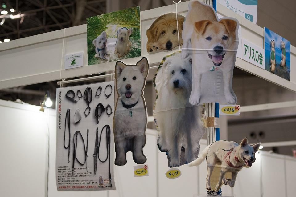 日本動物生命尊重の会 パネル★960 保護犬