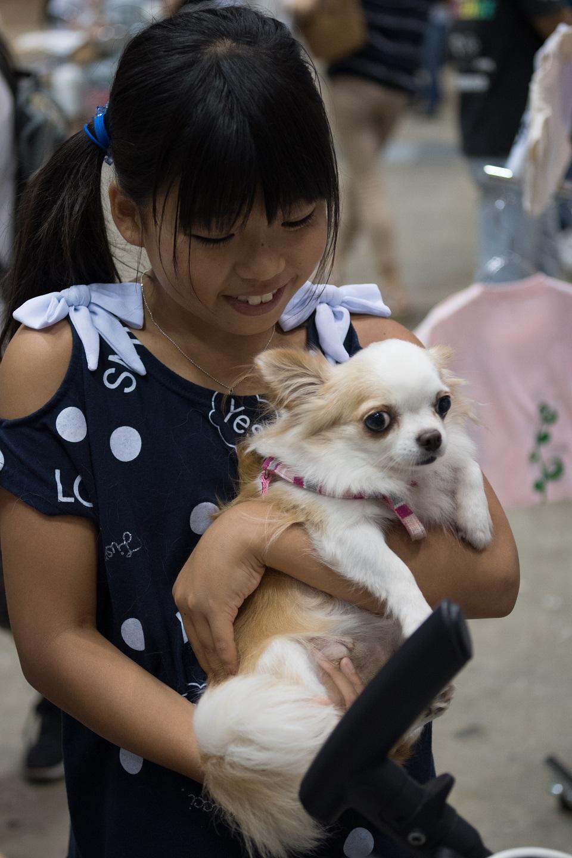 子供と保護犬★960