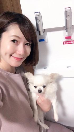 関さん 保護犬