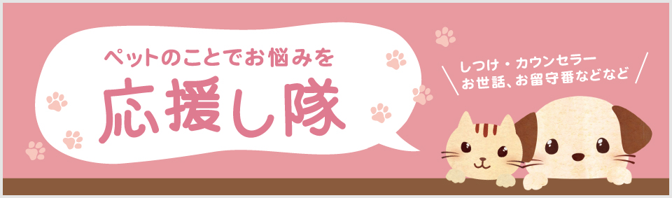 犬猫を飼う前に読むサイト 一般社団法人RENSA